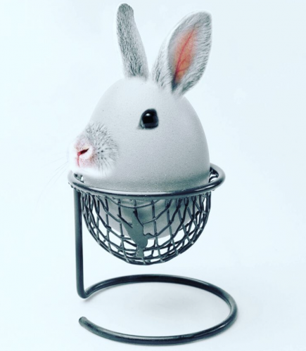 Photo manipulation: Easter egg looking like a bunny